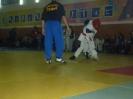 Спорт_82