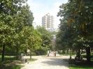 Поселок Лазаревское_14